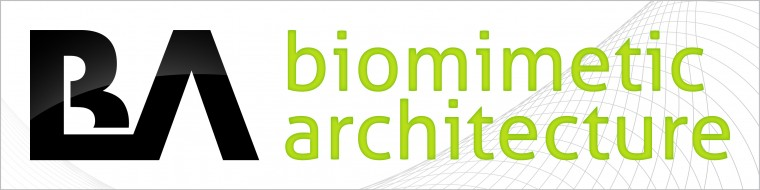 Biomimetic Architectur